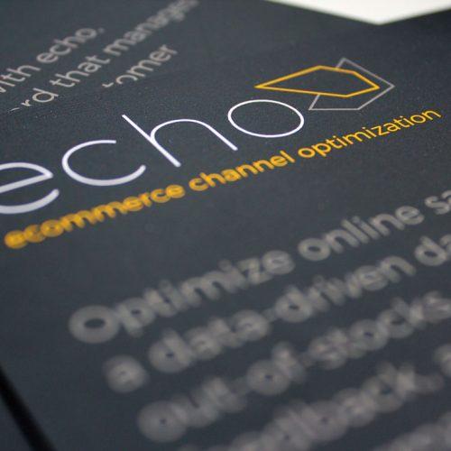 echo branded flyer